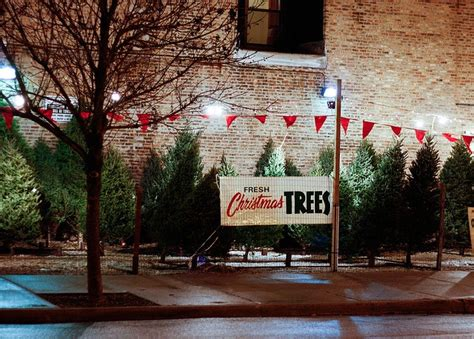 1950ish christmas tree lot outdoor spaces pinterest