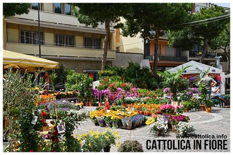 cattolica in fiore vacanze famiglia cattolica acapulco hotel