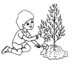 Peanut Plant Coloring Page Pages Of Trees sketch template