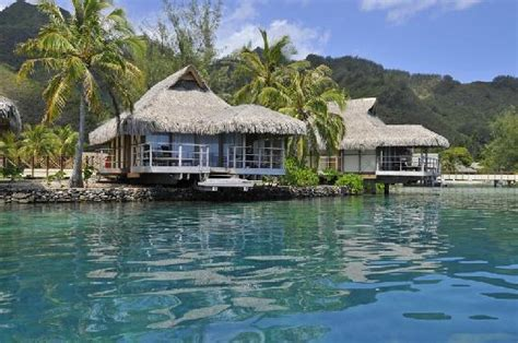 moorea overwater bungalow suite overwater bungalows terrace picture of