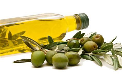 Minyak Zaitun Naturel croatia home to the best olive in the world croatia week