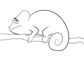 draw cartoon chameleon coloring pages