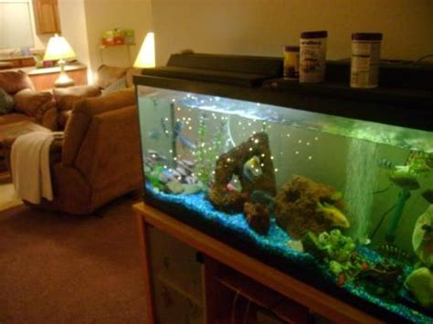 fish tank in living room living room accessories living room furnishings living