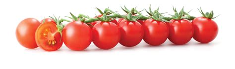 tomato color vermillion tomato colors photo 34537476 fanpop