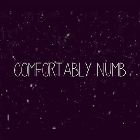lyrics to comfortably numb comfortably numb tumblr