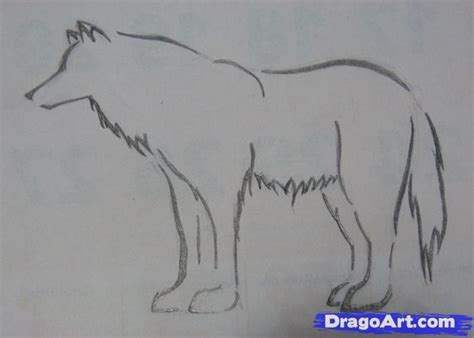 How To Draw A Wolf That Is Easy How To Draw A Simple Tribal Wolf Step By Step Tribal