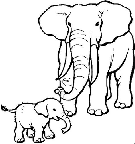 elephant coloring pages for toddlers free coloring pages elephant coloring pages for kids