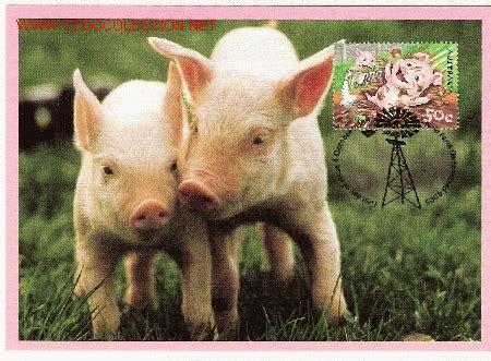 imagenes animales de granja os presentamos a todos los habitantes de la granja