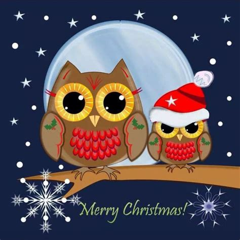 christmas owl pictures 150 best images about owls on how to draw owl mosaic and owl family
