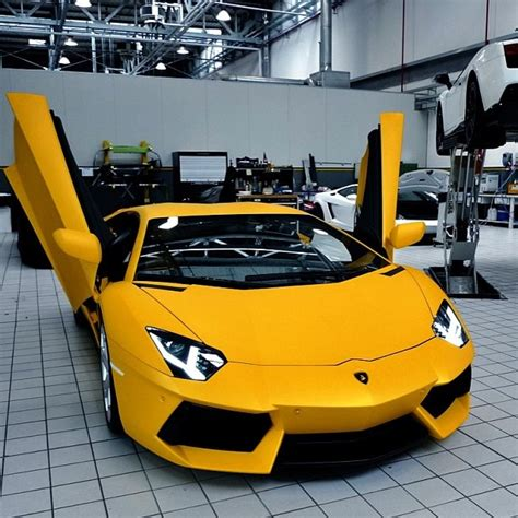 lamborghini private jet 219 best lamborghini images on pinterest cars autos and
