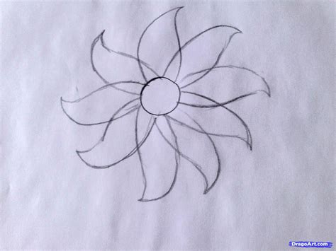 hibiscus flower drawing step by step archives pencil