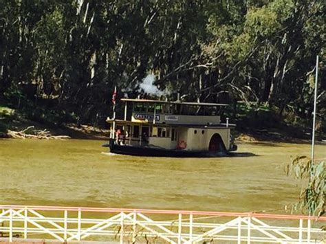 paddle boats canberra photo3 jpg picture of murray river paddlesteamers ps