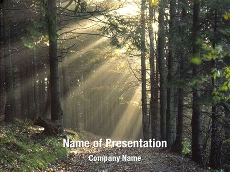 template forrest trees in the forest powerpoint templates trees in the