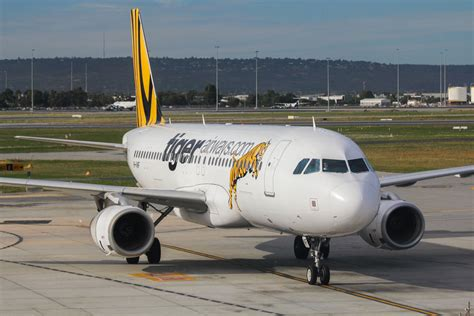Budget Airline Tiger Airways To Fly To Perth Australia by Image Gallery Tiger Flights