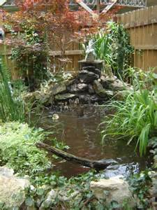Backyard Duck Pond Ideas 1000 Ideas About Backyard Ducks On Pinterest Raising