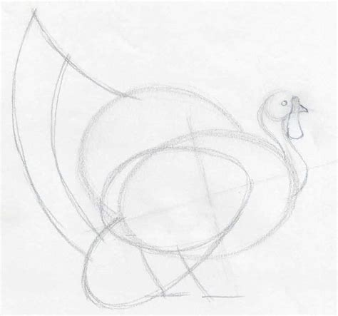 Sketches And Drawings by How To Draw A Turkey In Pencil