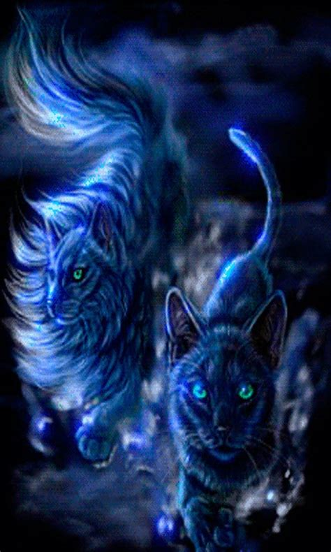 wallpaper blue cat free blue cat live wallpaper apk download for android getjar