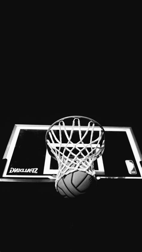Free picture: ball, board, hoop, basketball