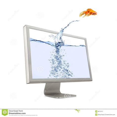 jump on computer goldfish jumping out of screen royalty free stock