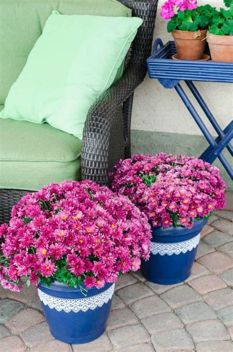 Cheap Planter Ideas by Transform Your Cheap Planters With These 15 Stunning Ideas