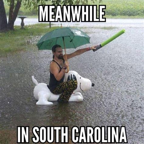 South Carolina Memes - 50 state memes that perfectly sum up what other states are thinking