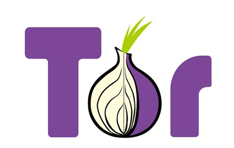 onion tor the 10 step guide to using tor to protect your privacy zdnet