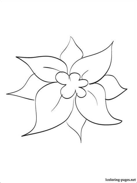 coloring page christmas flower christmas flower coloring page coloring pages