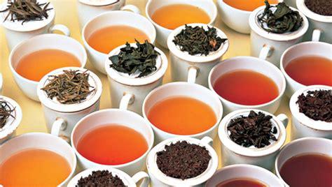 Best Logo Color Combinations by Ceylon Tea Story Az Teas Premium Of Pure Ceylon Tea