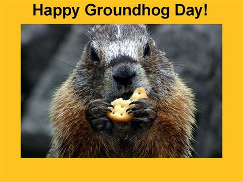 groundhog day one day groundhog day for canada published by utat on day 2 266