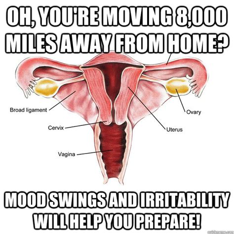 what can help pms mood swings oh you re moving 8 000 miles away from home mood swings