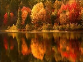 beautiful autumn colors autumn