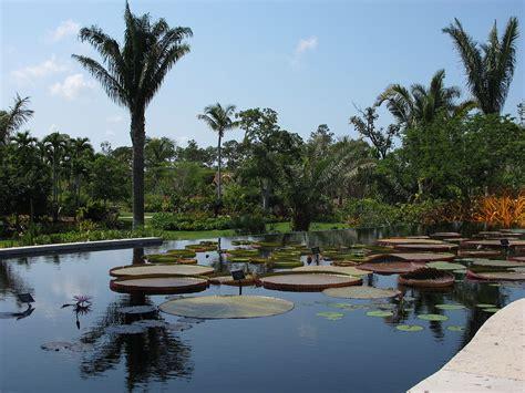 Botanical Gardens In Naples Florida Naples Botanical Garden