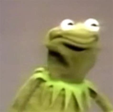 Frog Face Meme - best photos of kermit and cookie monster meme kermit the