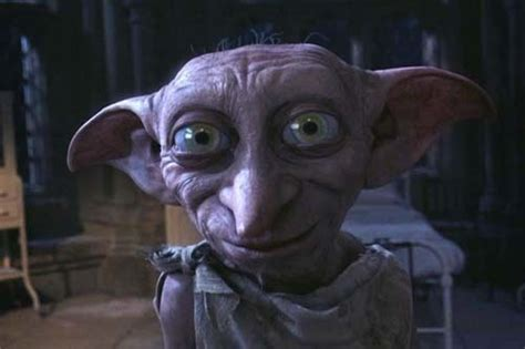 house elf dobby the house elf images dobby the house elf wallpaper and background photos 7047233