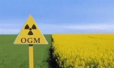 commissione agricoltura ogm de petris e bordo sel grave contaminazione in