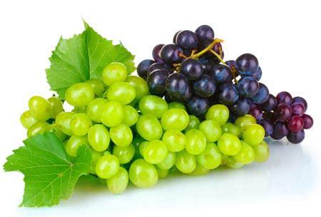 uvas silvestres imagenes la semana de las frutas y verduras 03 la uva brainstomping