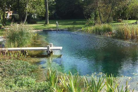 Natural Pool by Bio Swimming Pools The Self Cleaning Mini Ecosystems
