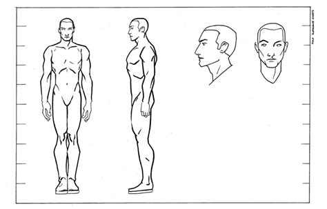 Reference Male By Questingraven On Deviantart Character Design Template