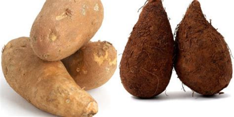 what color are sweet potatoes what s the difference between sweet potatoes and yams