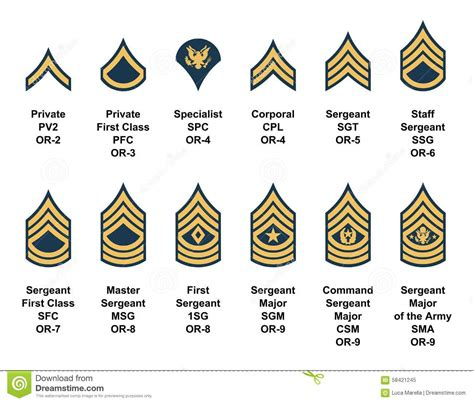current us army rank structure cpl cartoons illustrations vector stock images 22