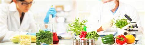 tecnologo alimentare il tecnologo alimentare in azienda
