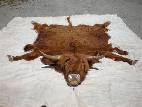 Cattle Rug Highland Cow Rug Hootie By Minotaur On Deviantart