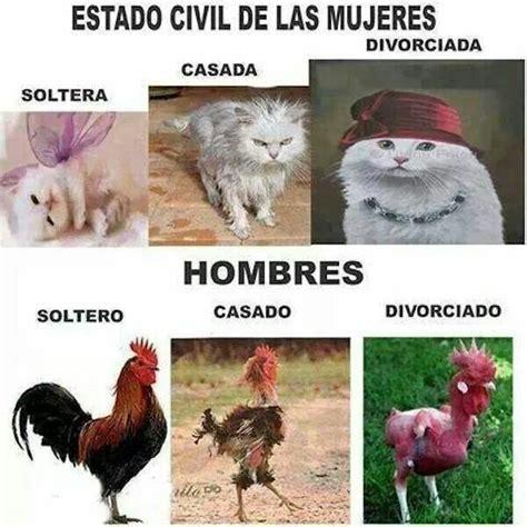 imagenes graciosas hombres vs mujeres soltero o casado humor in spanish buen humor en