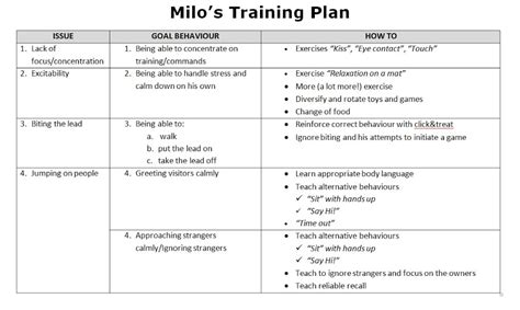 exercise session plan template process how i work milo s