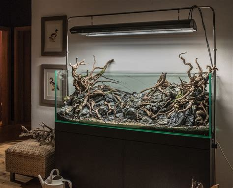 wood aquascape understanding hardscape in the aquascape aquascaper