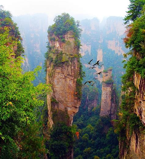 avatar film in china zhangjiajie national park china filming location for
