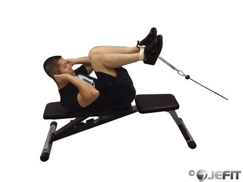 reverse crunch on bench cable reverse crunch exercise database jefit best