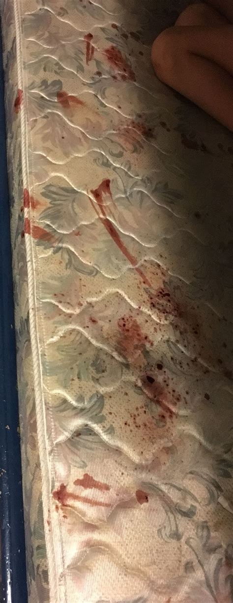 Blood Removal From Mattress by The Best Way To Remove Blood Stains From A Mattress Wikihow
