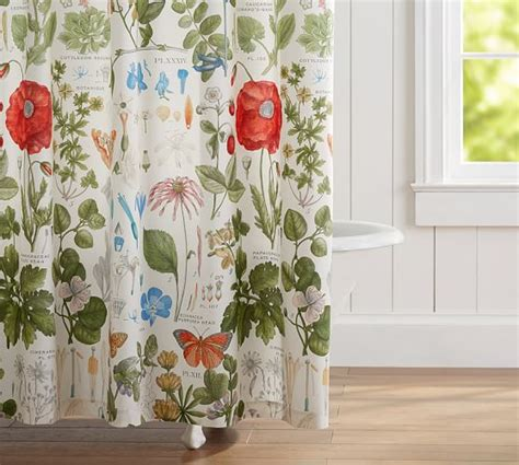 botanical shower curtain poppy botanical print shower curtain pottery barn