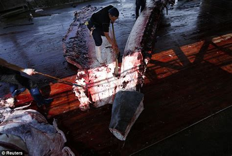Whaling Is Still Big In Japan by Pictures Show Japanese Whale Carving In Front Of